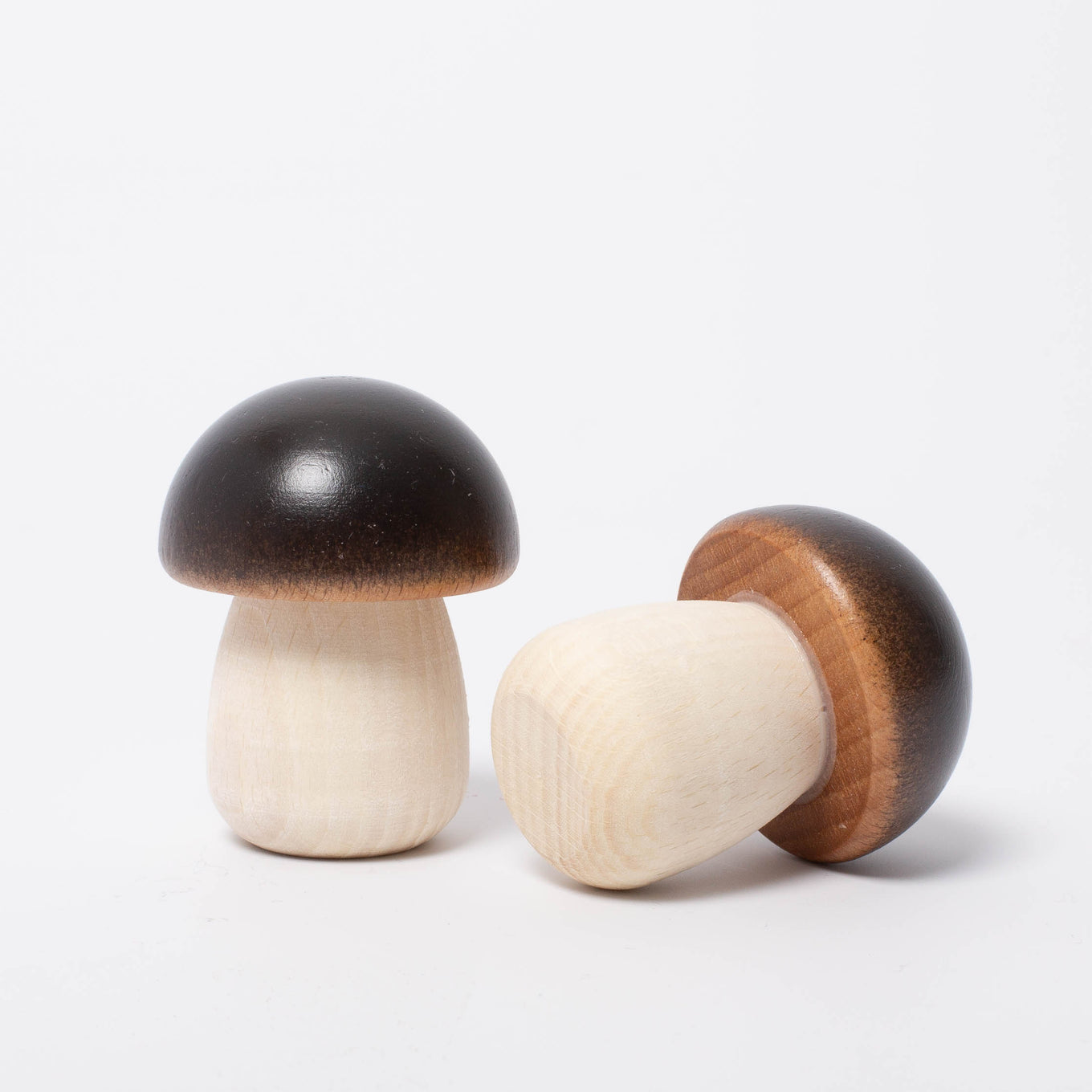 Wooden Vegetable | Yellow Boletus