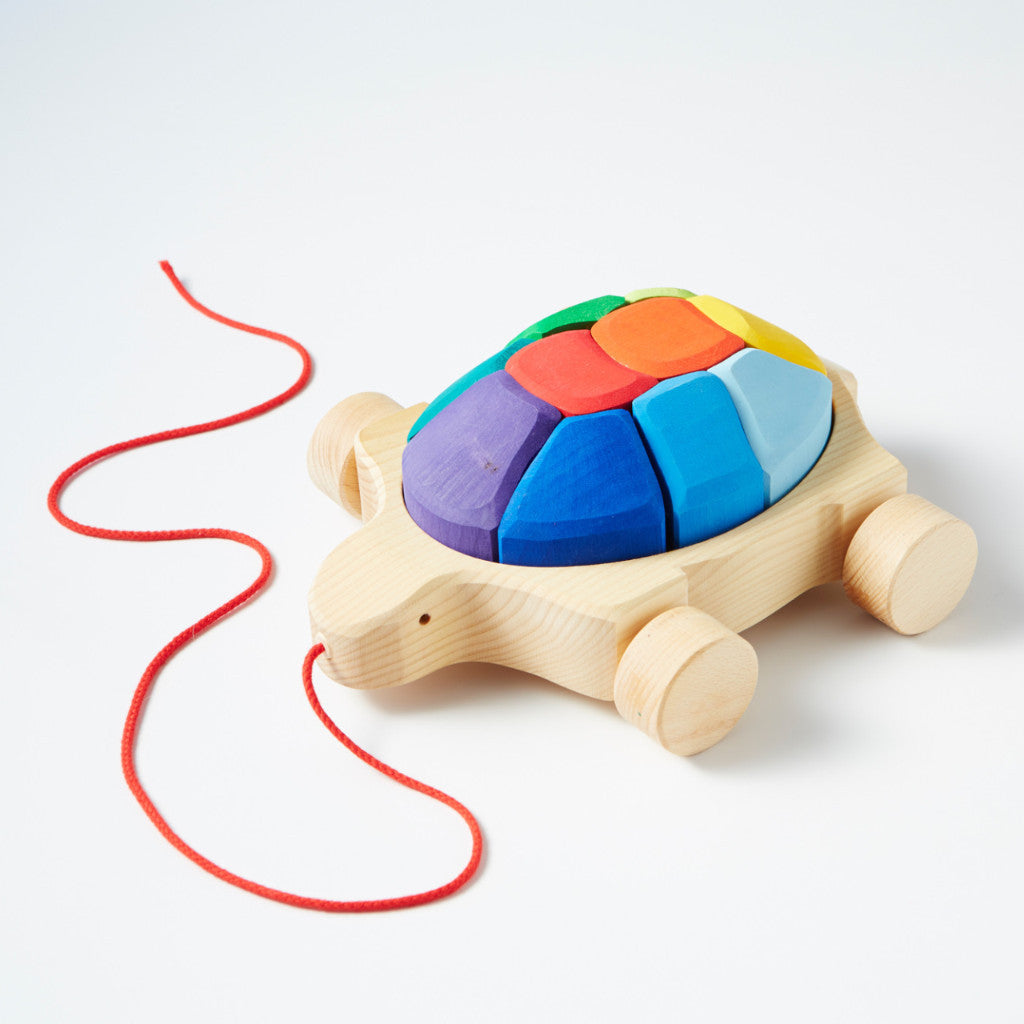 Pull Along Rainbow Turtle