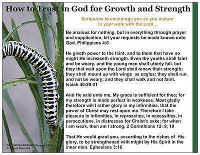 How to Trust in God for Growth and Strength Butterfly Prayer Card
