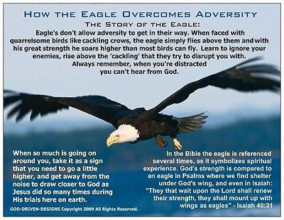 How the  Eagle Overcomes Adversity Inspirational Prayer Card