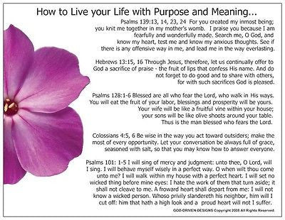 How to Live Your Life with Purpose Prayer Card