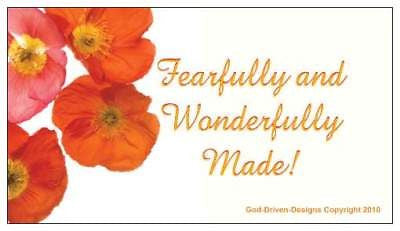 God Driven Designs Fearfully Wonderfully Made Magnet Marketing Package Gift Idea Image