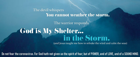 Do Not Fear Coronavirus 2 Timothy 1:7 Banner - Storm