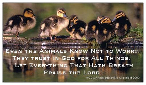 Let Everything Give Thanks Animal Psalm 150:6 Magnet 25/Pack