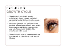 Load image into Gallery viewer, Lash X-Treme Advanced - Lash Conditioner and Growth Serum