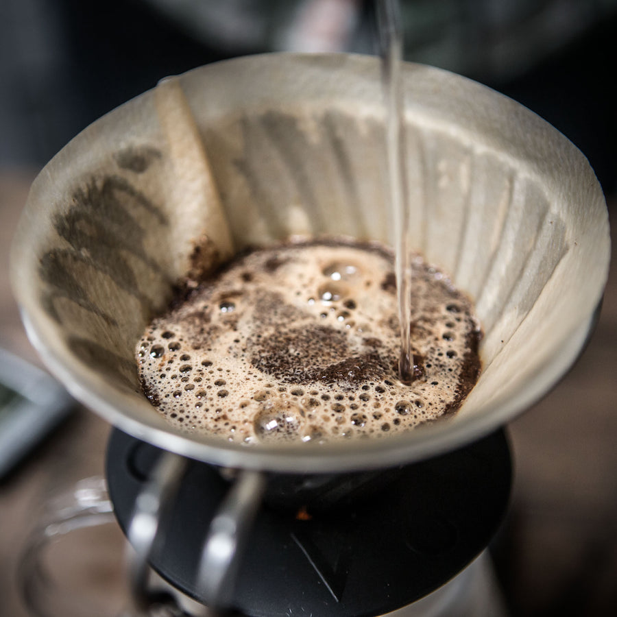 Hario V60 pour-over with water | Cast Iron Coffee Roasters