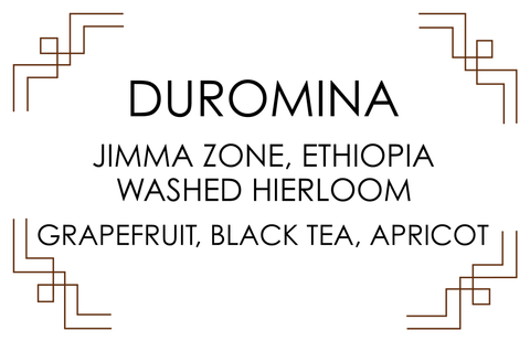 DUROMINA, ETHIOPIA. Washed Heirloom. Grapefruit, black tea & apricot.