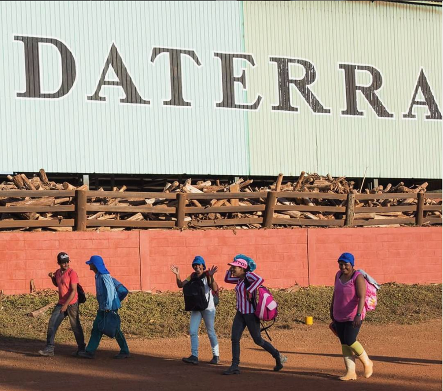 DATERRA BRAZIL.  Pulped natural Catuai & Vermelo.  Dark chocolate, vanilla, caramel.