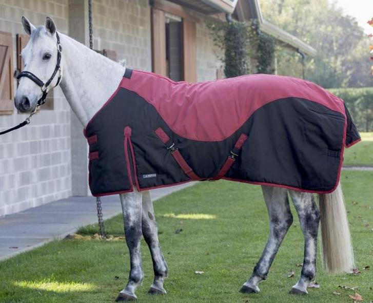 Loyd Turnout Rug (400 g Heavy)