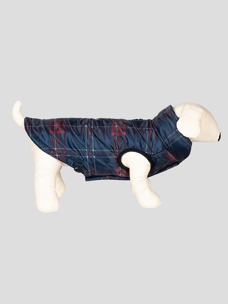 Potty - Tartan Dog Blanket