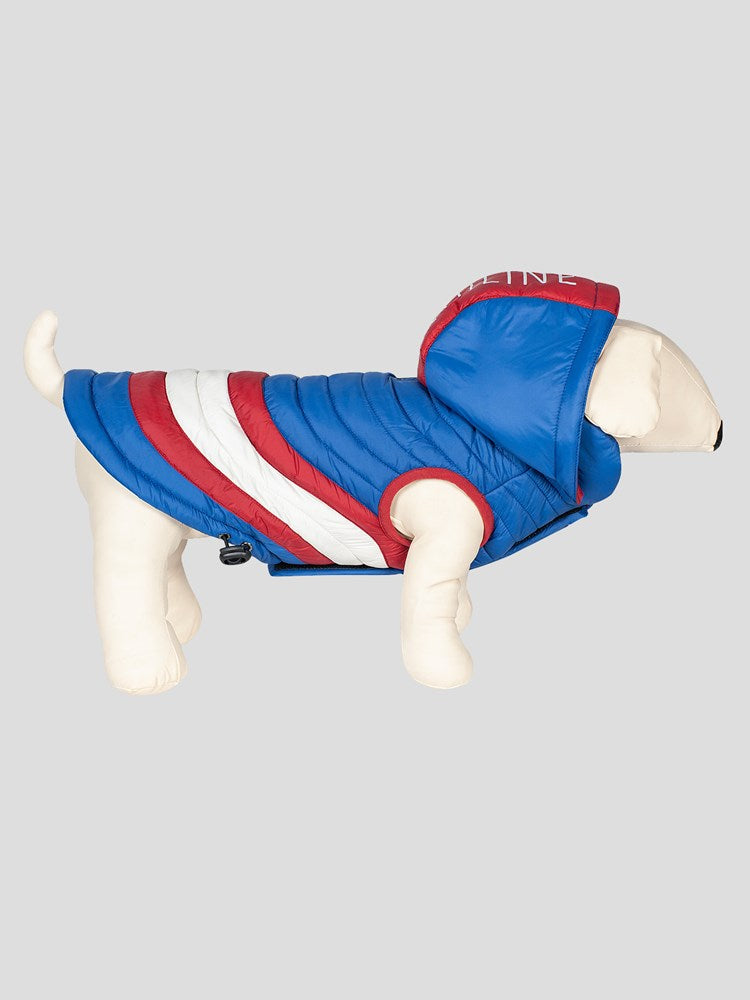 Prehnite - Sporty Quilted Dog Blanket