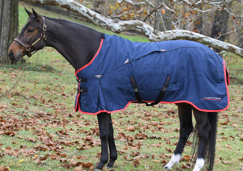 Kory Turnout Rug (200 g Medium)
