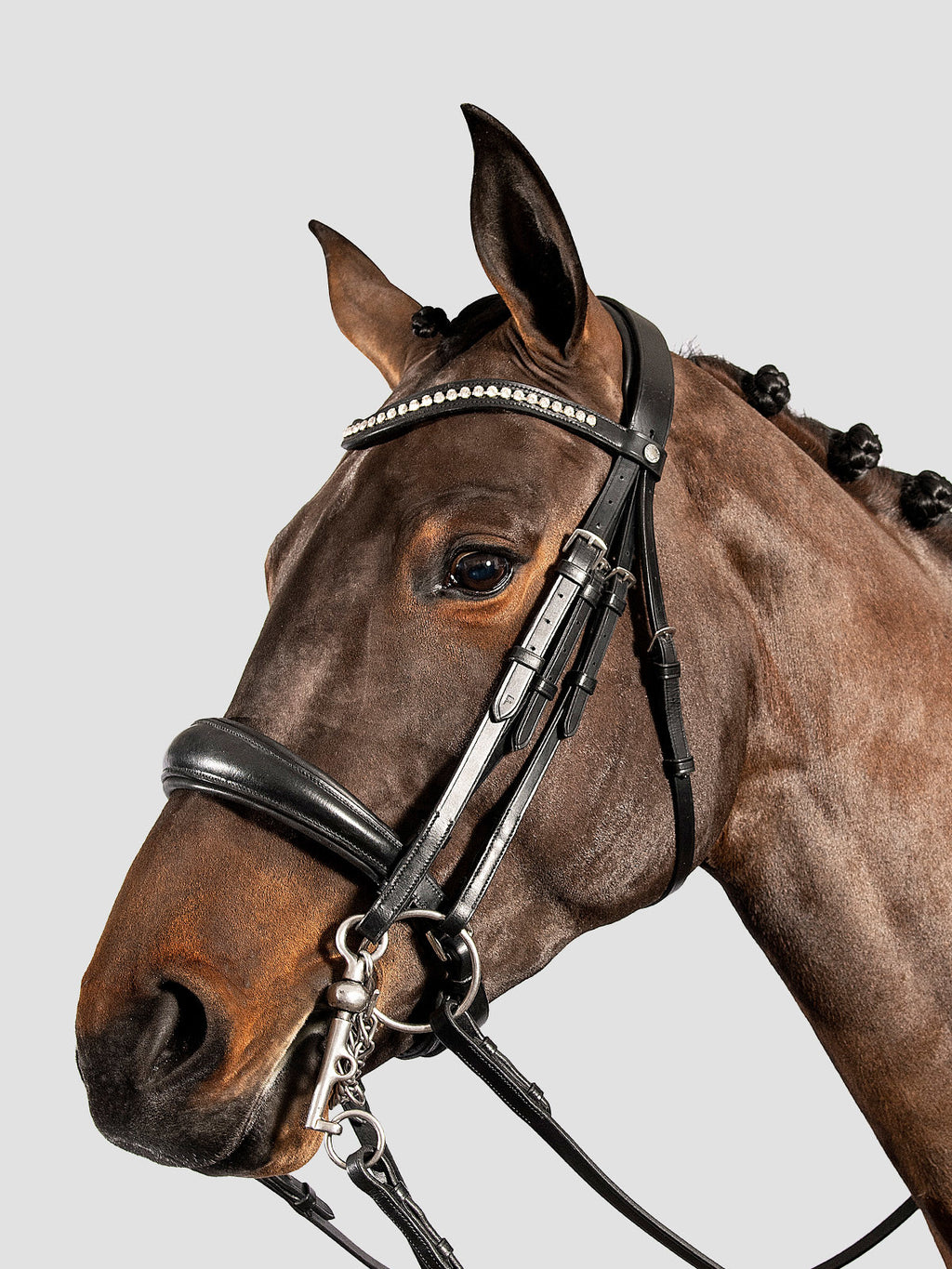 Double Bridle w/ Strass
