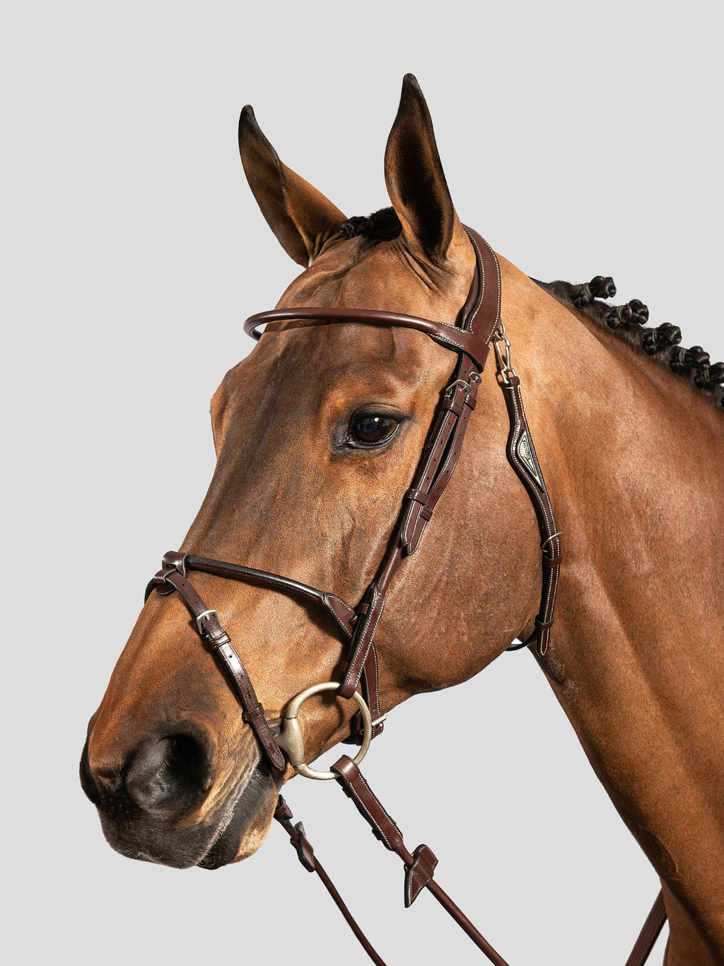 Rolled Bridle