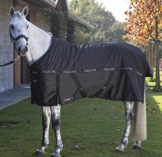 RAYNER Stable Sheet (No fill)