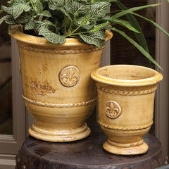 Fiore Footed Urns