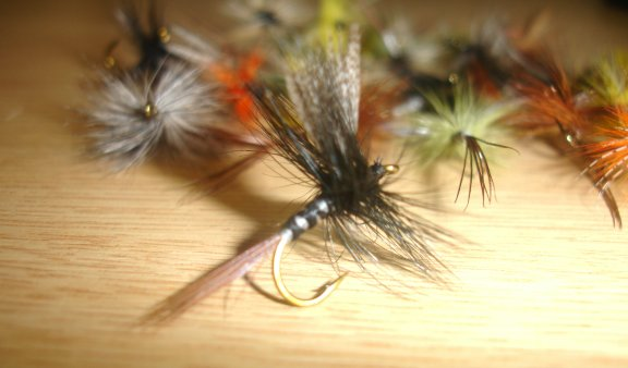 Assorted May Flies x 20pcs