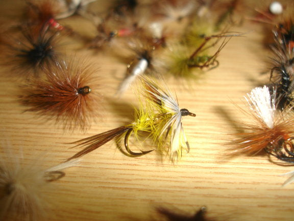 Assorted Special Dry Flies x 30pcs