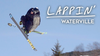 STE-TV – Lappin': Waterville