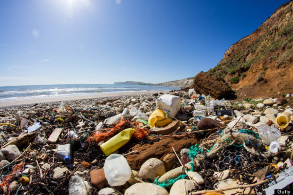 The Plastic Tide