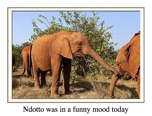 Ndotto was in a funny mood
