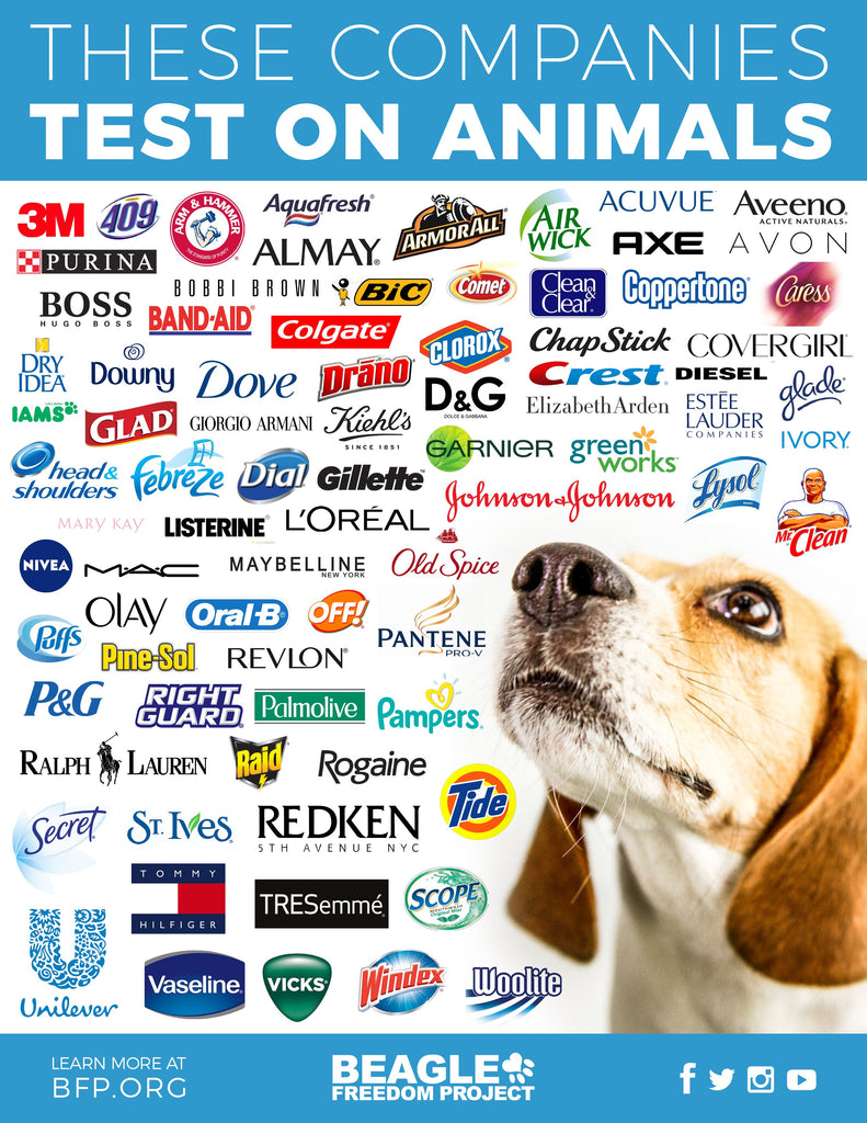 Beagle Freedom Project Animal Testing List