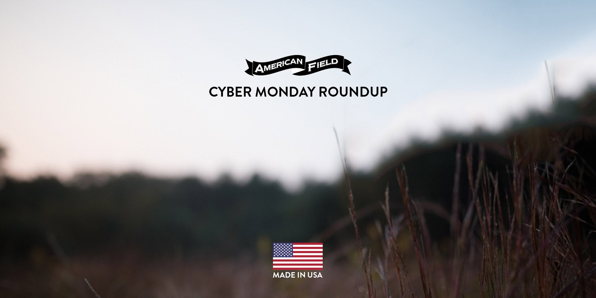Our Cyber Monday Roundup