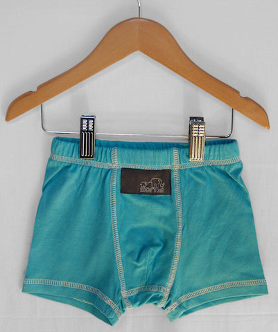 Boy's Boxer Briefs (I Love You Blue)