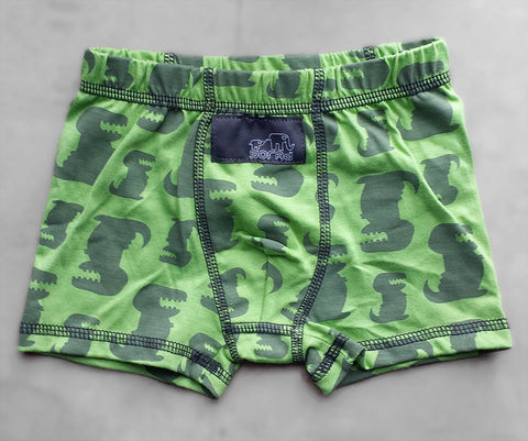 Boys Boxer Briefs - 3 Pack (Blue, Green Dinos & Brown)