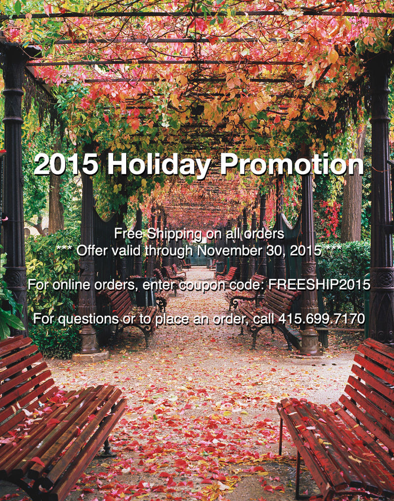 HOLIDAY PROMOTION 2015