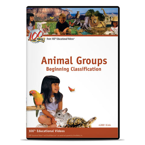 Animal Groups: Beginning Classification