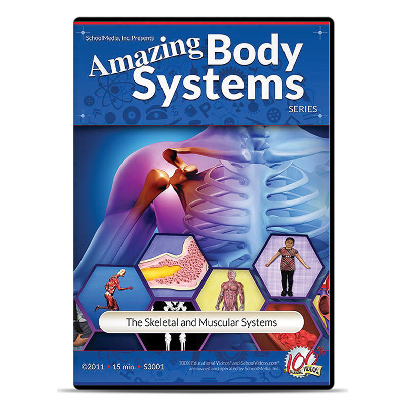 The Skeletal and Muscular Systems: Amazing Body Series