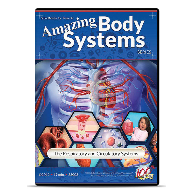 The Respiratory and Circulatory Systems: Amazing Body Series