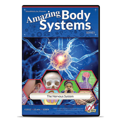 The Nervous System: Amazing Body Series