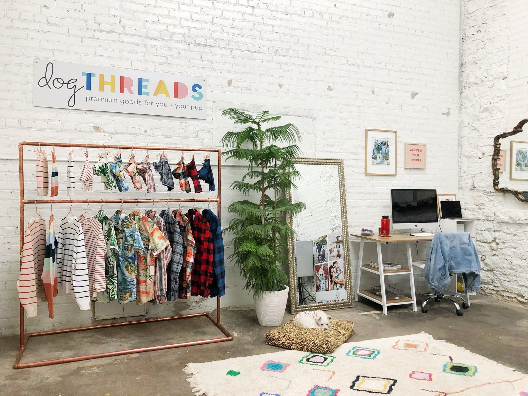 Glimpse Inside #DogThreads HQ