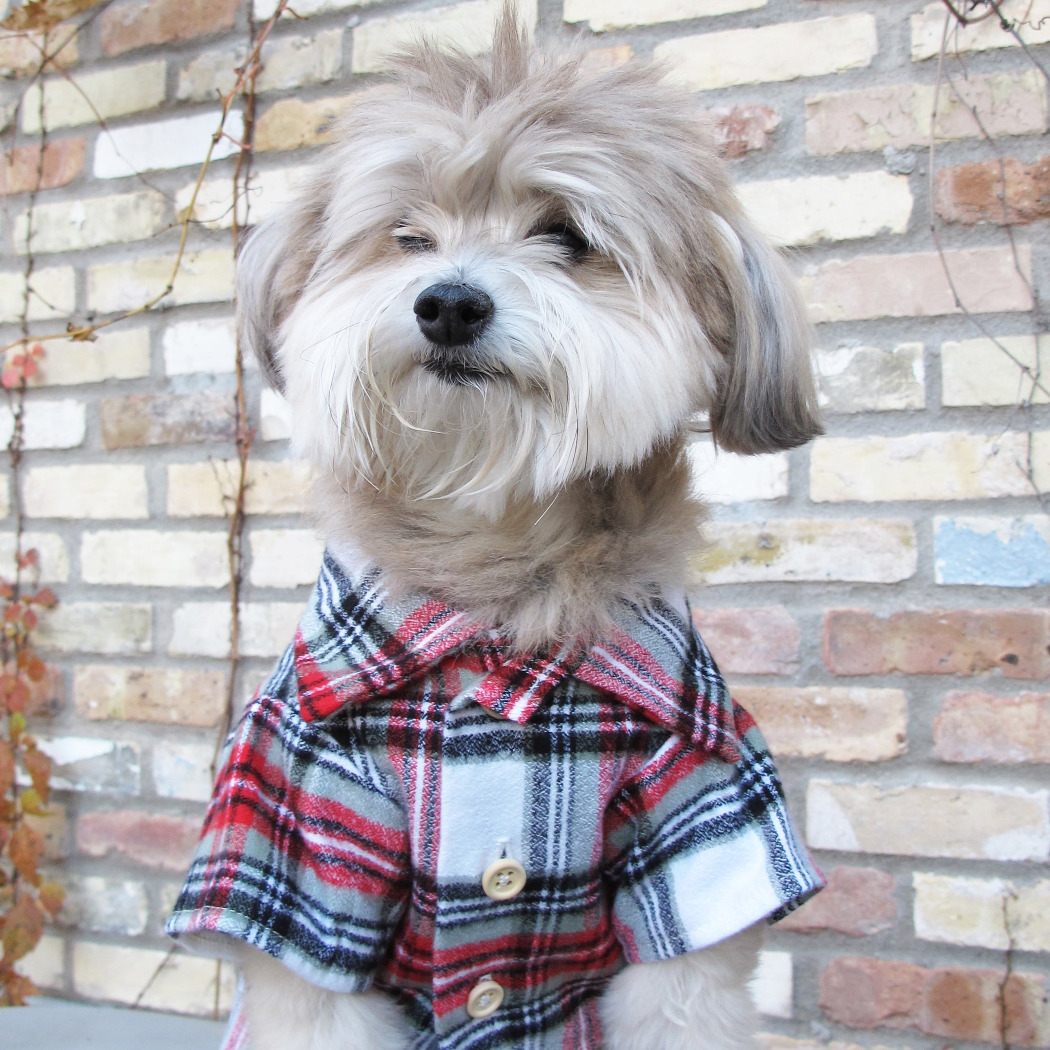 Dog Threads Holiday Dog Flannel Shirt for Henry Loves Betty