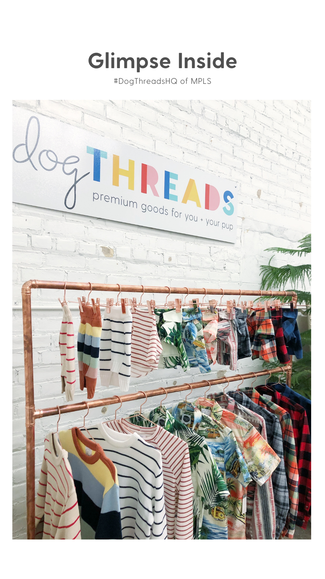 Dog Threads Headquarters in Minneapolis, Minnesota
