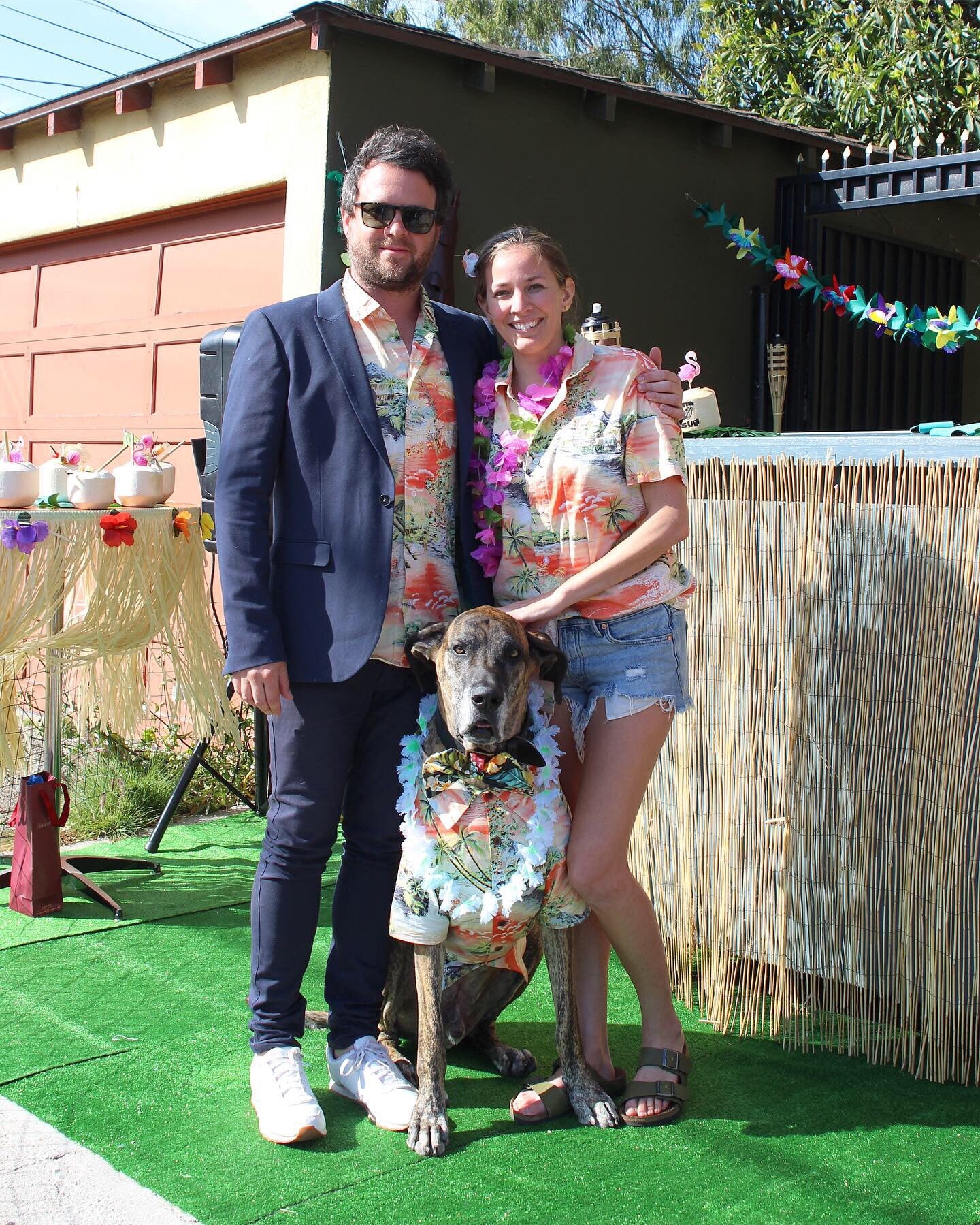 The Best Luau Themed Dog Birthday Party Ever Dog Threads