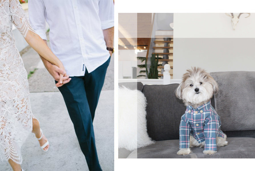 Dog Threads | Our Story + Mission