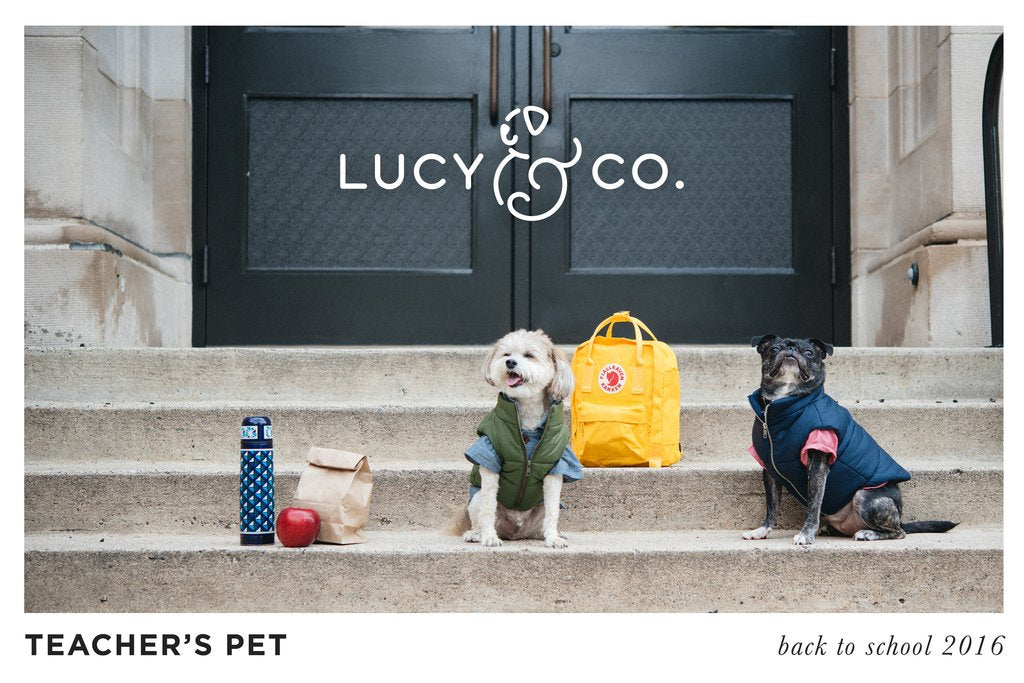 Lucy & Co Dog Threads Button Down Shirts