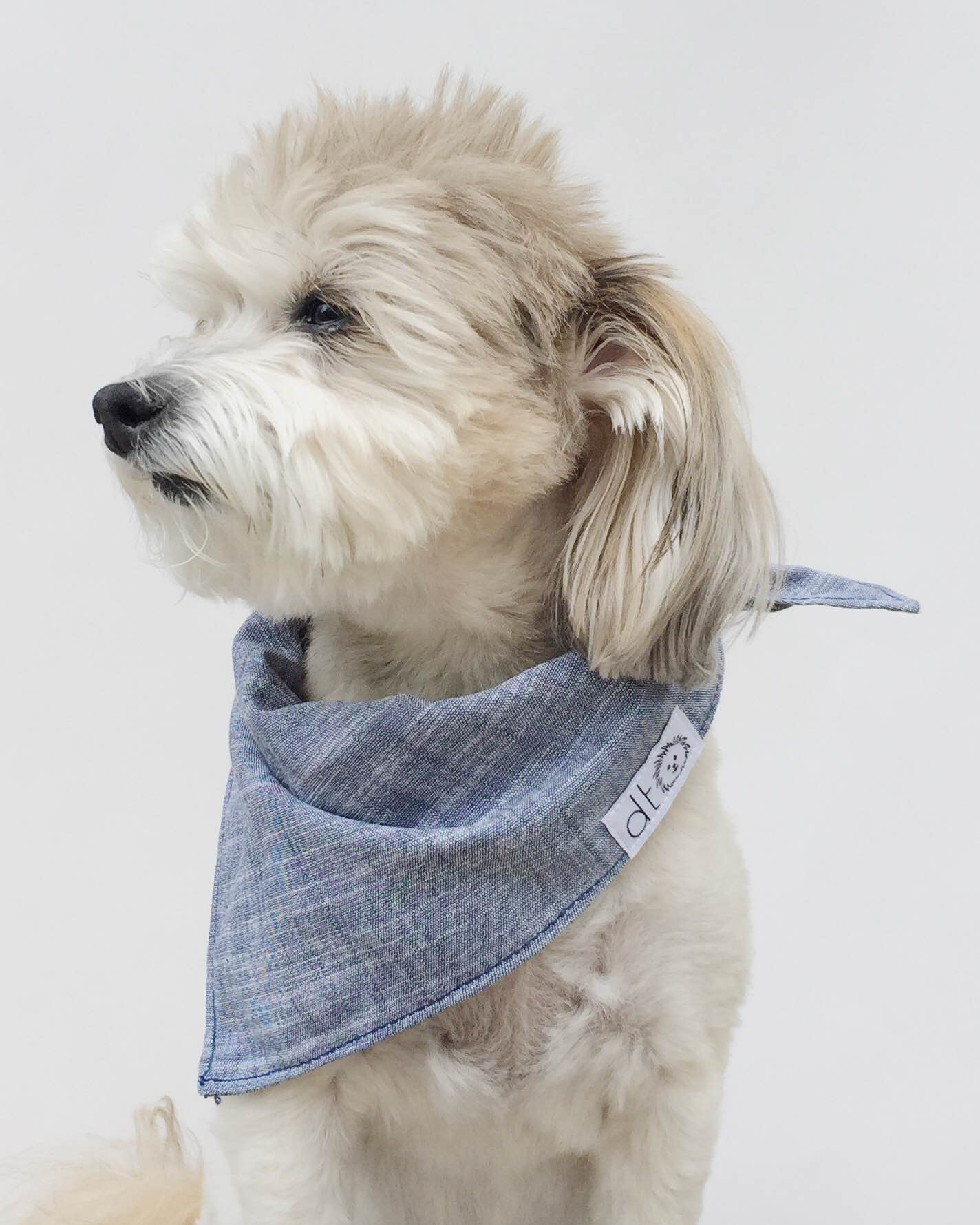 Dog Threads Chambray Bandana