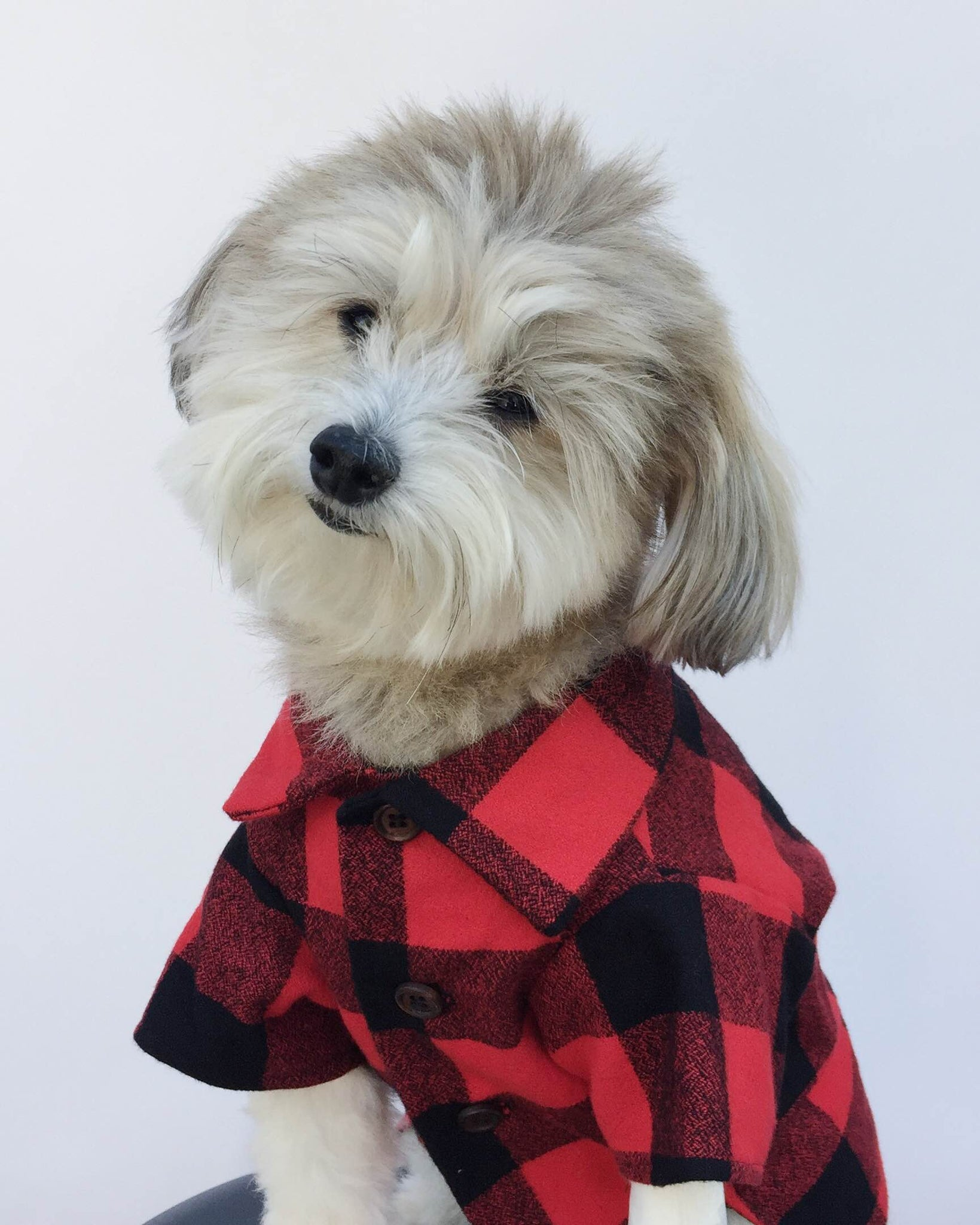 Buffalo Plaid Dog Shirt