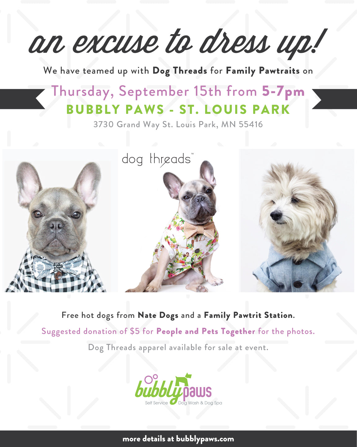 Awkward Family Pawtraits at Bubbly Paws in Minnesota | Dog Threads