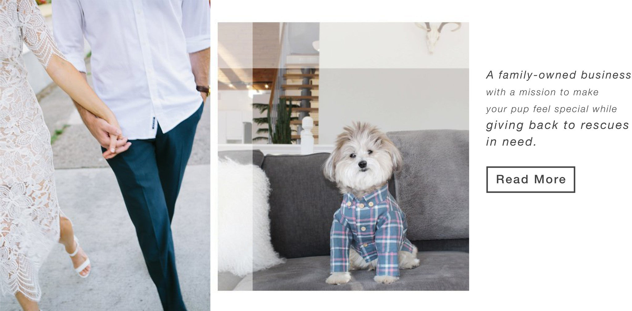 Family-Owned Pet Apparel Brand Dog Threads
