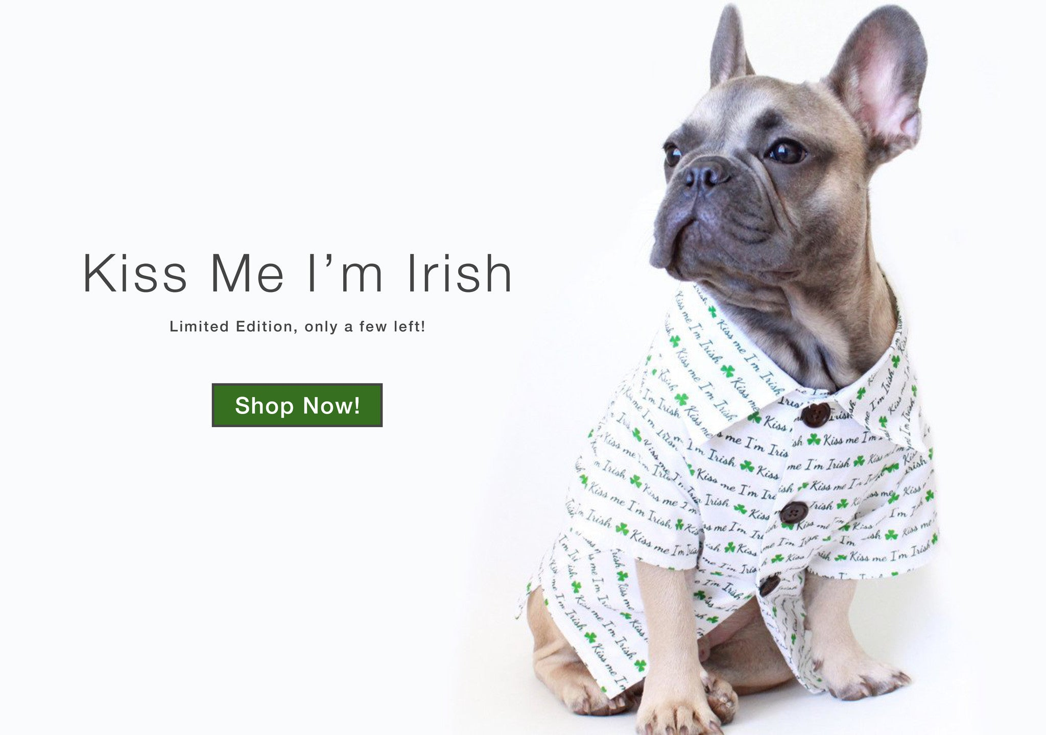 Kiss Me I'm Irish Dog Shirt for St. Patrick's Day by Dog Threads