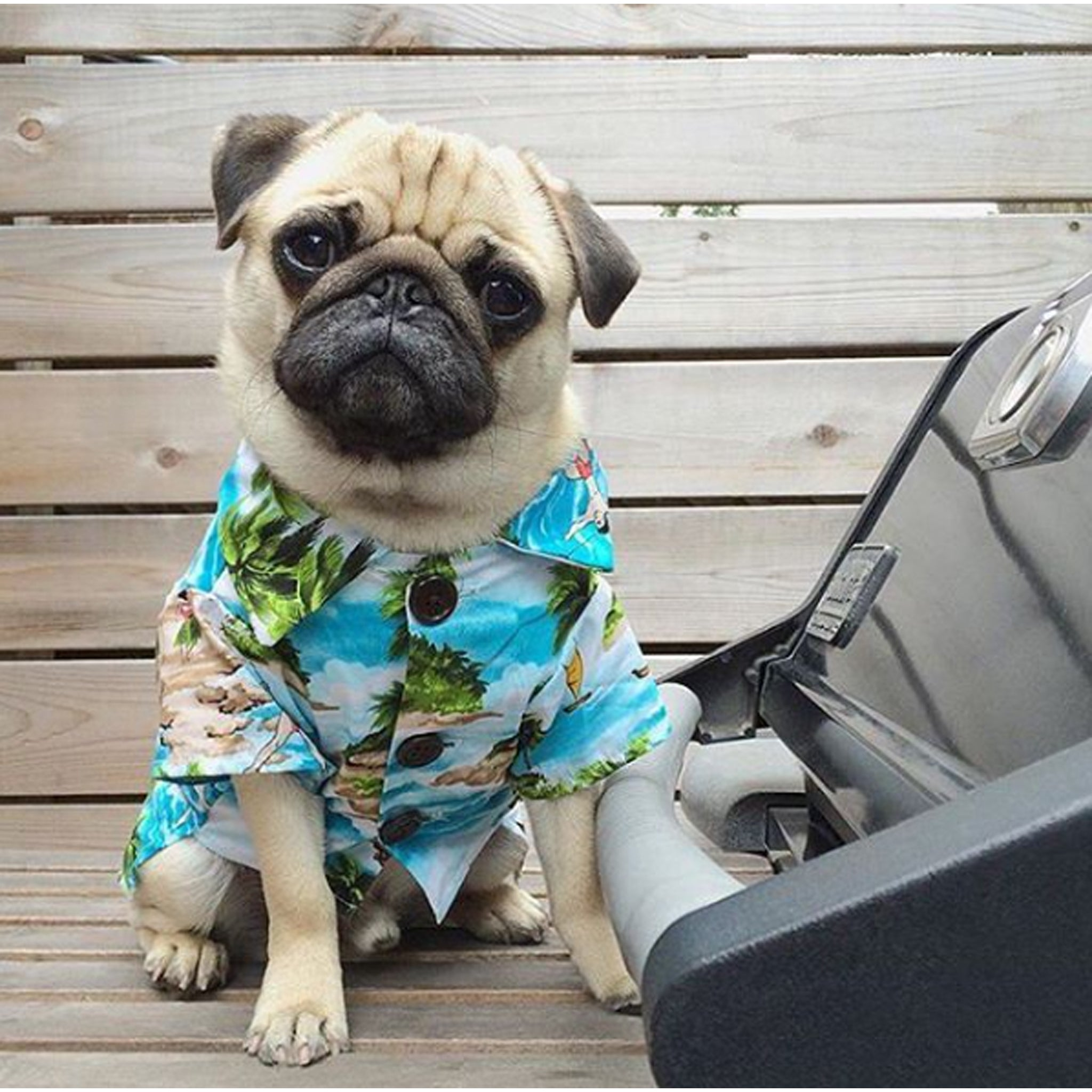 Lucy & Co Hawaiian Shirt by Dog Threads