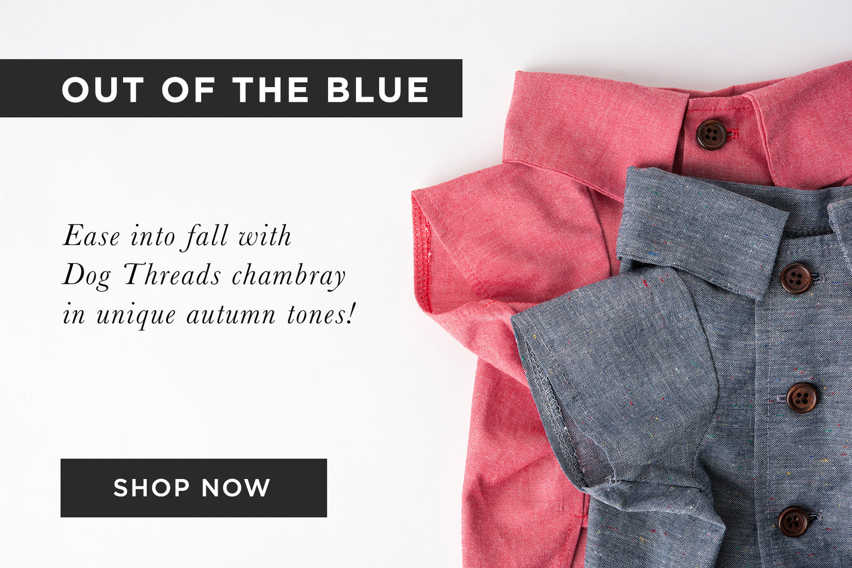 Dog Threads x Lucy & Co Collaboration | Chambray Dog Shirt