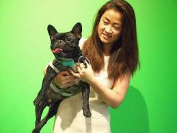 Bloomingdales fashion shoot with frenchie WonderWoof dog activity monitor