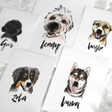 Custom Animal Portrait