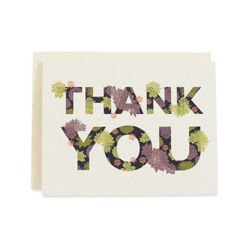 June & December - Succulent Thank You Cards, Boxed Set Of 8